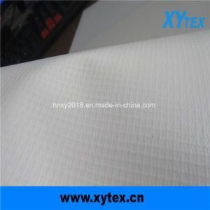 En el interior de la impresión digital&Publicidad al aire libre de PVC Material Flex Banner