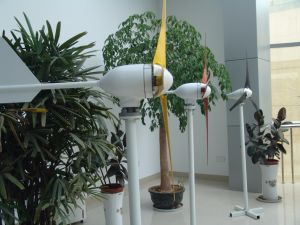 Generatore di turbina facile del vento dell'installazione 300W 12V/24V per uso domestico