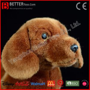 Giocattolo molle realistico della peluche del cane del Dachshund dell'animale farcito En71 per i capretti