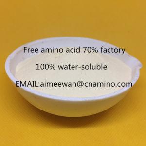 Vrij Aminozuur 70% Organische Fabriek van de Meststof, In water oplosbare 100%