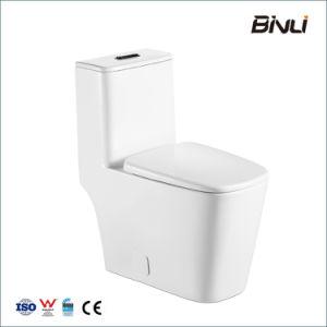 L'économie piège Siphonic S 300mm encastré double Salle de bains en une seule pièce pour le projet de toilette en céramique