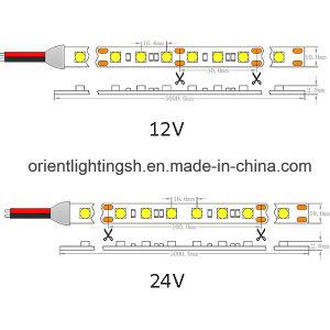UL CE5050 SMD 60 LEDs/M, IP65 Luz de LED