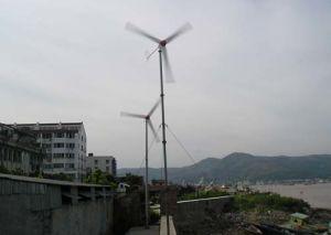 De Generator van de wind (500W)