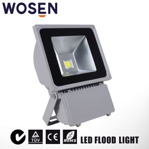 AC85-265Vの庭承認されるRoHSの屋外100W LEDのフラッドランプ