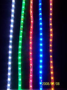 Luz de Neón LED LED Iluminación LED impermeable
