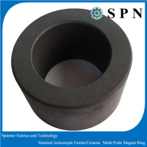Ferrite dur/boucle multipolaire agglomérée en céramique à un aimant permanent pour le moteur micro
