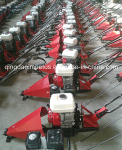 120cm CEE Segadora gasolina GS-120