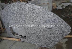 Countertop van de Keuken van het Graniet van de nevel Witte voor Badkamers en Eiland