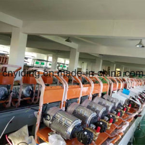 200bar/2900psi 11L/min haute pression électrique de la rondelle (YDW-1010)