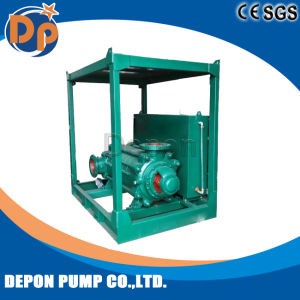Pompa centrifuga portabile della multi fase di serie di D
