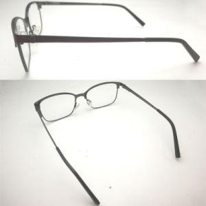 Het hete Verkopende Roestvrije Materiële Optische Frame van de Bril van de Glazen van het Metaal Steel&Acetate Optische voor Vrouwen