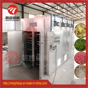 La carotte de séchage des aliments de la machine avec circulation d'air chaud