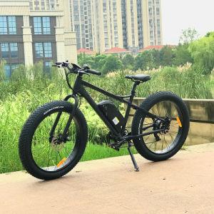 Los 90s 8fun 48V500w de la grasa de motor trasero Bicicleta eléctrica