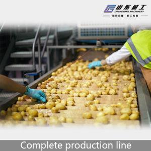 Микросхема картофеля фри и быстрозамороженные производства машины
