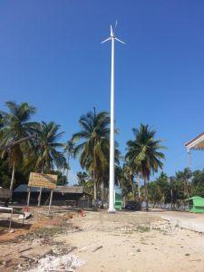 1000W 48V горизонтальные ветровой турбины с генератора 3 лопастей