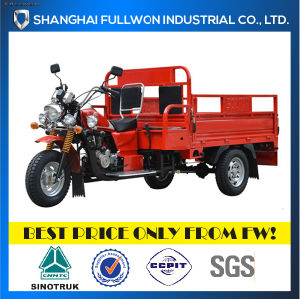 Fl150zh-Eb Full Luck 3 Wheels Cargo Motorcycle