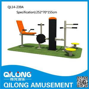 Strumentazione esterna di forma fisica del corpo (QL14-239A)