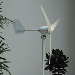 300W 12V 50Hz générateur de l'éolienne pour le bateau (SHJ-300M)