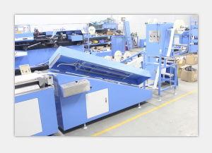 기계 Spe 3000s 2c를 인쇄하는 자동적인 스크린이 면에 의하여 레테르를 붙인다