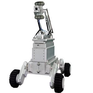 De kabeltelevisie Gereden Robot van de Camera van de Inspectie Zichtbare