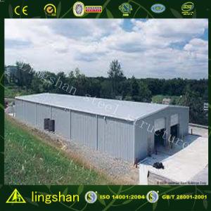 Подгонянный светлый набор пакгауза стальной структуры (LS-SS-209)