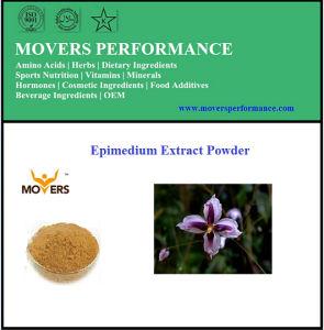 Polvere organica dell'estratto del Epimedium di alta qualità