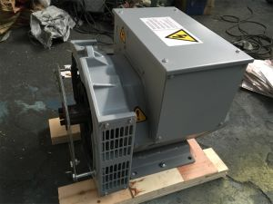 3kw-160kw Brushless Alternator van de Generatie van de macht