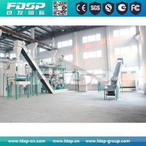 Marcação ISO SGS aprovado biomassa completa linha de pelotas de madeira