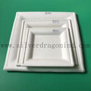 Unicolor bac à papier de pâte de canne à sucre jetables (Food Grade)