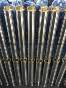 3sdm110-0.25浸水許容の深い井戸の水ポンプ(単一フェーズ)
