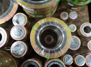 Heiße verkaufende gewundene Wunddichtung für Ventilteller-Pumpe