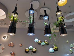 Pendentif en verre de bois botanique pendaison 89077d'éclairage décoratifs modernes (S)
