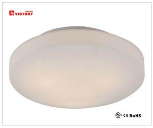 高品質の現代表面の台紙LEDの天井灯ランプ