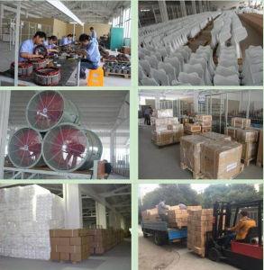 turbina del generador de turbina de viento 20kw/de viento del uso de la granja o de la fábrica