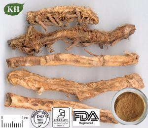 Extracto Asphodeloides Anemarrhena Venda quente