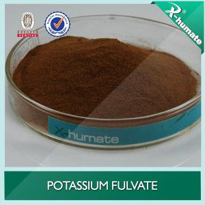 Kalium Fulvate Hoge Fulvic Zure K2o voor Meststoffen