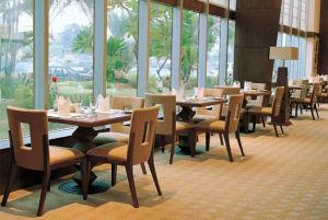 Nouveaux meubles modernes de restaurant pour l'hôtel d'étoile (EMT-SG40)