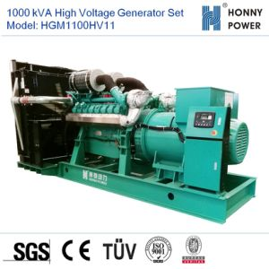 1000 ква генератором высокого напряжения установлен двигатель Googol 10-11кв с 50Гц