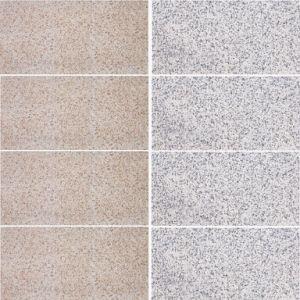 De decoratieve Grijze/Beige BuitenTegel van de Muur van de Steen voor Flat (300X600mm)