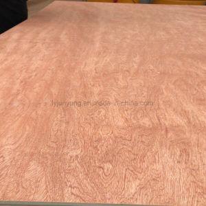 Bintangorの表面木のベニヤのポプラの合板