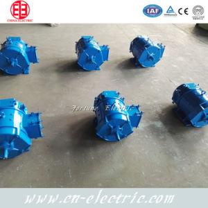 Baja velocidad del motor eléctrico de la clase F DC 10kw de China