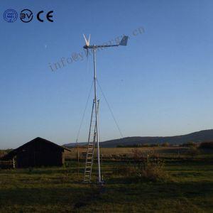Generatore di turbina del vento di energia rinnovabile del fornitore piccolo 2kw