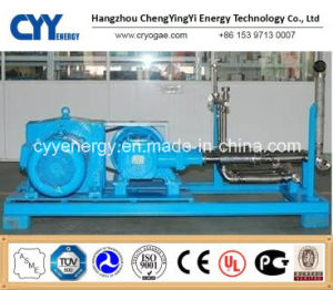 Cyyp 55 Uninterrupted Service Large Flow e High Pressure LNG Liquid Oxygen Nitrogen Argon Multiseriate Piston Pump