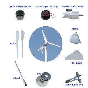 Turbina de viento para el hogar de 1000W los generadores eólicos Planta de Energía Eólica