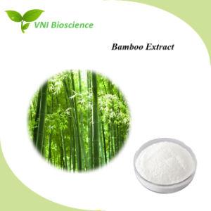 La certificación ISO el extracto de bambú de alta calidad