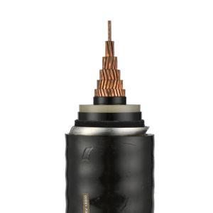 Cavo di energia elettrica del cavo/SWA dell'isolamento di Redartant XLPE della fiamma con lo standard di IEC
