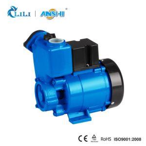 Anshi 0.5HP Zusatzwasser-Pumpe mit thermischem Schoner (GP126)
