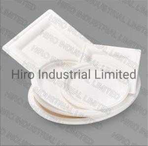 Grande plaque ovale la bagasse de vaisselle biodégradable jetable