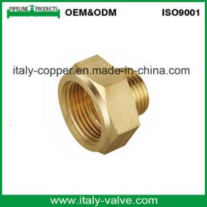 OEM y ODM Boquilla del tubo de latón forjado (AV-BF-7003)