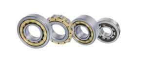 Roulements à rouleaux cylindriques (avec le circlip) N NU Nj Nup série NF